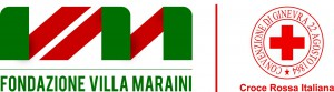 logo VM ITRC